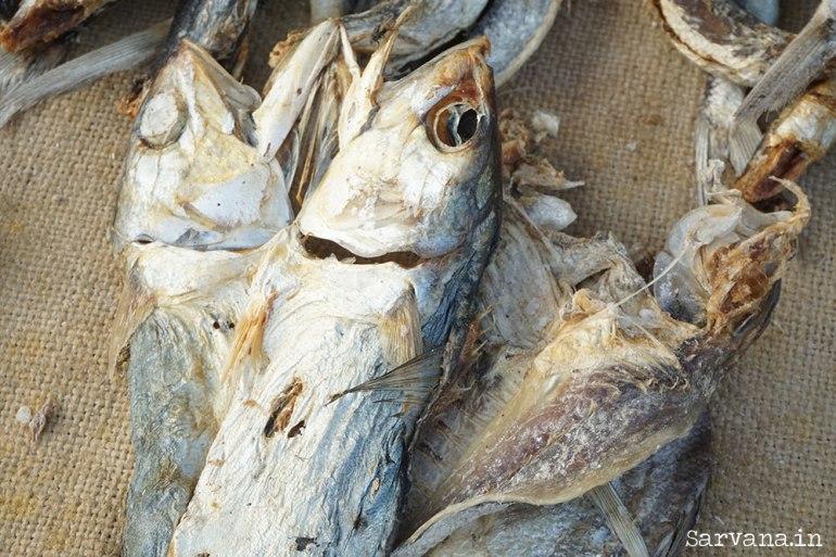 Fish Market - Dried Fish