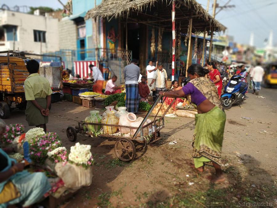 Woman pushing cart